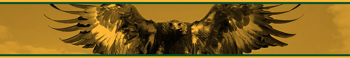 GCT Golden Eagles